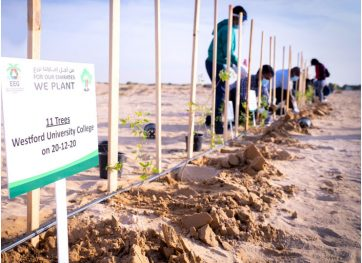 wuc-planting